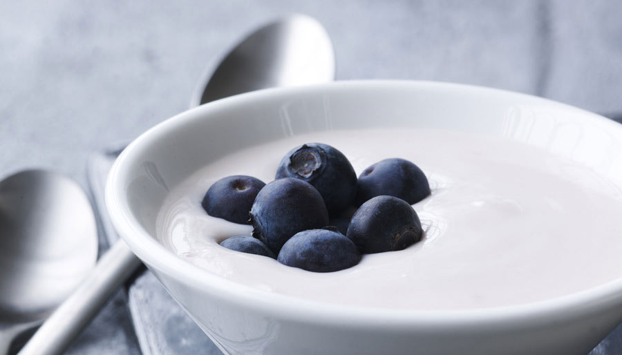 Creamy yogurt culture with blueberries