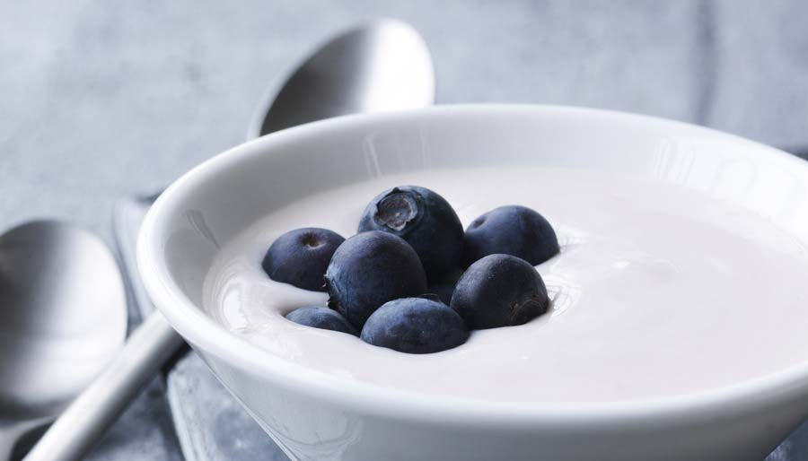 Yoghurt with blueberries