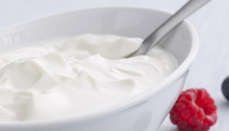 Yoghurt in bowl