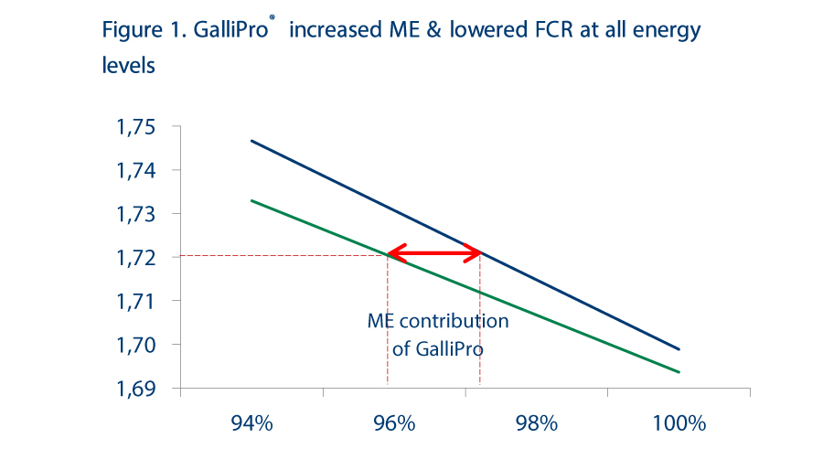 New Flexible Feed Formulation concept aims to improve broiler performance on lower-cost diets, Figure 1 GALLIPRO increased ME & lowered FCR at all energy levels
