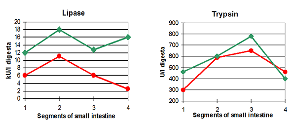 Figure 3 Early-life piglet performance is critical for success
